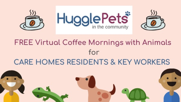 Virtual Coffee Mornings with Animals