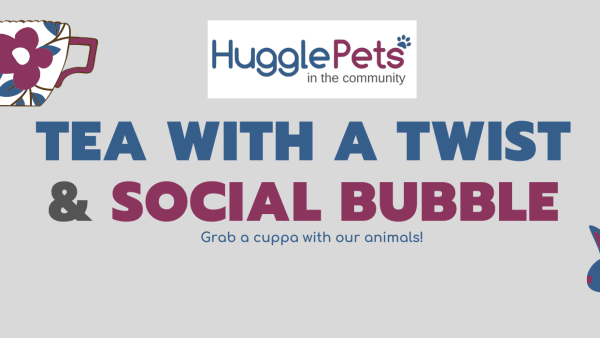 Tea with a Twist - Social Bubbles - 17/12/20